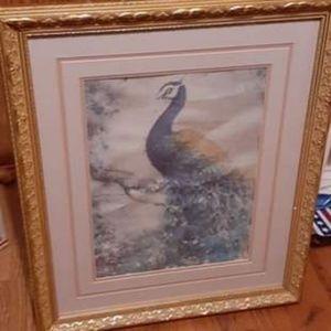 Framed peacock decor